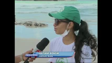 O mistério sobre a carcaça de um animal encontrado na Praia do Sobral foi desvendado