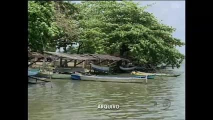 Após 8 meses, sururu volta a parecer na Lagoa Mundaú