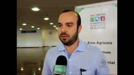 Expectativa de crescimento para a próxima safra de cana-de-açúcar em Alagoas