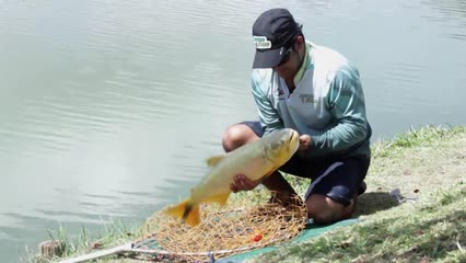 Aventura de pesca no Fishing Park