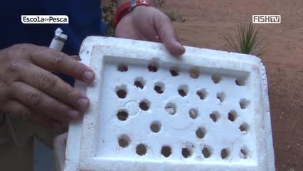 Como armazenar minhocas