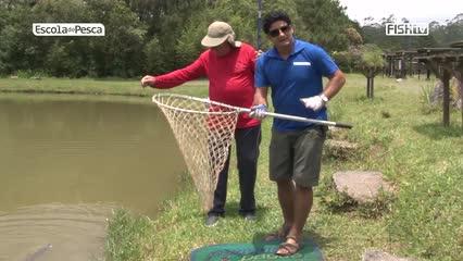 Capturar e soltar o peixe com segurança