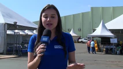 Produção de peixes no Noroeste Paulista