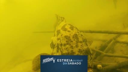 Atração é comandada pelo pescador Eduardo Monteiro