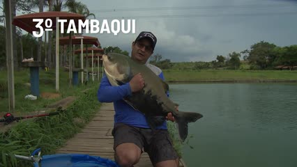 Top Fish TV - Top 5 peixes de pesqueiro