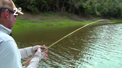 Top Fish TV - Top 3 peixes que escaparam