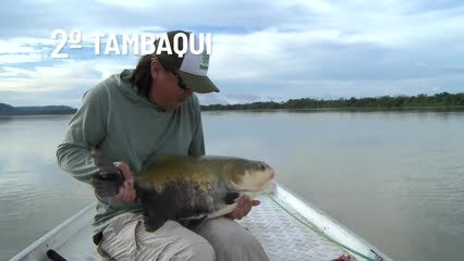 Top Fish TV - Top 3 peixes mais difíceis de pescar na Amazônia
