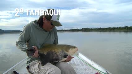 Top Fish TV - Top 3 peixes mais difíceis de pescar na Amazônia d9fb8d1b75e