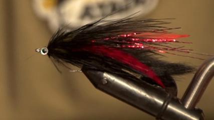 Svart Zonker e Pheasent Tail