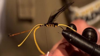 O jovem atador e suas moscas
