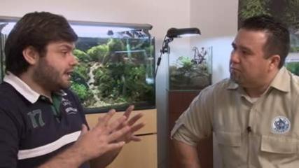 `Eu sou apaixonado por aquarismo`, com Pablo Goes