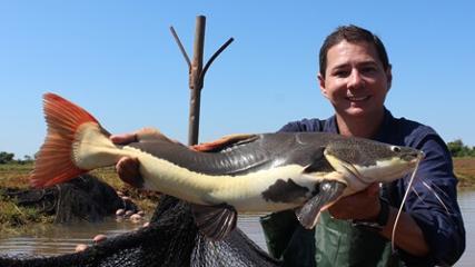 Criação de peixes nativos no Brasil - Projeto Pacu
