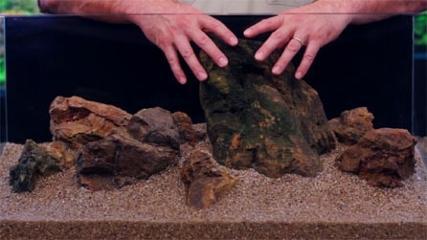 Layout com rochas