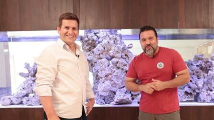 Ecosys e as tecnologias para aquários