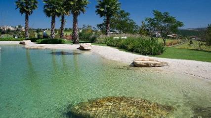 Um mergulho em meio à natureza
