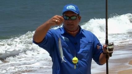 Fisgando cardume de peixe-agulhinha