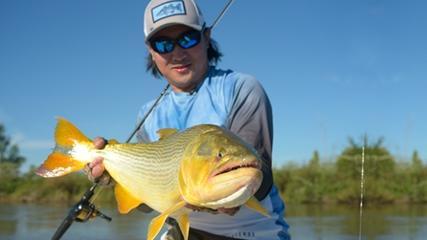 Pesca exploratória de dourados com iscas artificiais
