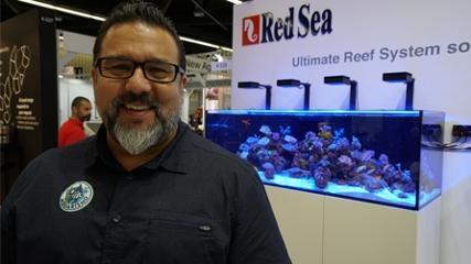 Lançamentos para aquários marinhos na Interzoo