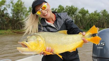 Peixe dourado, rei do rio, na Argentina