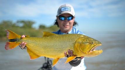Pesca exploratória de dourados com iscas naturais