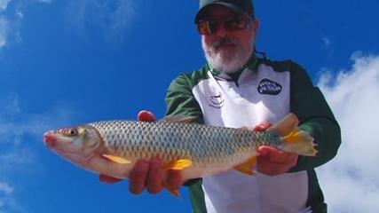 Ases da Pesca - Giovani Papa e a pesca!