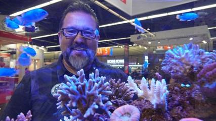 Inovações para o aquarismo marinho