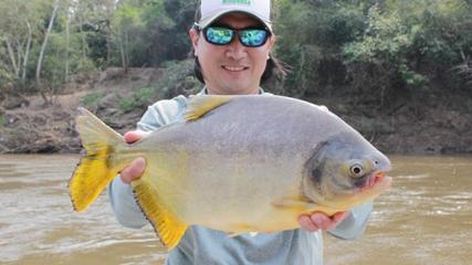 O esportivo Pacu nas correntezas do rio Miranda