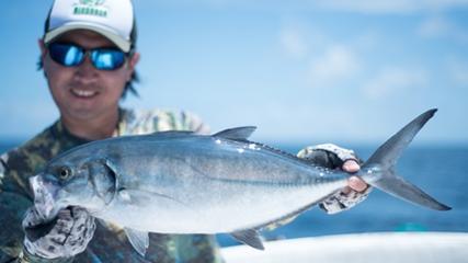 Biologia e pescaria exploratória em Cananéia