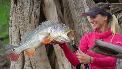 Pescando tucunarés pelo rio Juma
