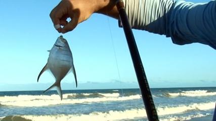 Pesca com miçanga solta nas pernadas