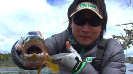 Parque Etnobotânico Omora e sua relação com a pesca