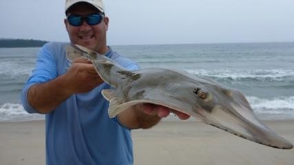 Chicote rápido para pesca de praia