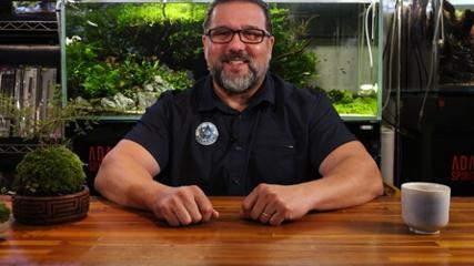 Montando o primeiro aquário
