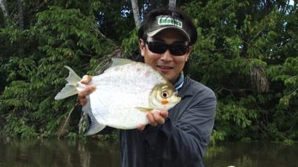 Comportamento e técnicas de pesca do pacu