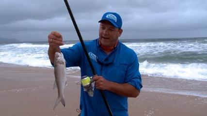 Lula como isca para pescaria debaixo de mau tempo