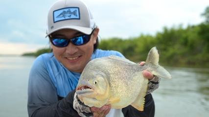 Peixes onívoros e esportivos do rio Paraná