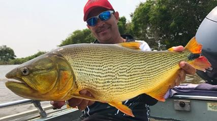 Pescaria variada no Pantanal
