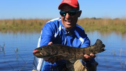 Pescaria de traíras em Corrientes