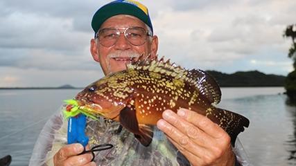Pescaria tradicional de peixes diversos