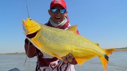Dourados na isca soft em Corrientes