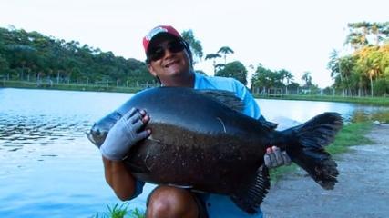 Pescaria de redondos com iscas variadas