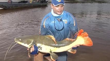A riqueza de espécies do rio Araguaia