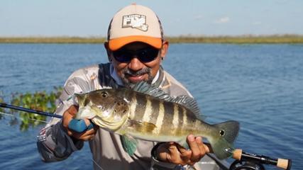Uma aventura no Pantanal sul
