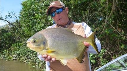 A beleza dos peixes argentinos