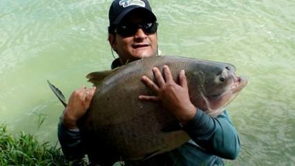 Peixes e diversão entre amigos