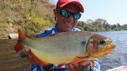 Pesca de fly no Pantanal