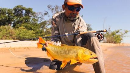 Dias dourados nas águas do rio Paraná