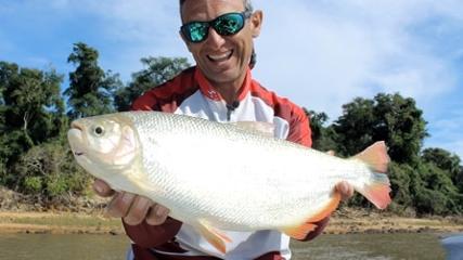 Pasión por la Pesca - Milho para piraputanga e piapara em Puerto Rzepecki