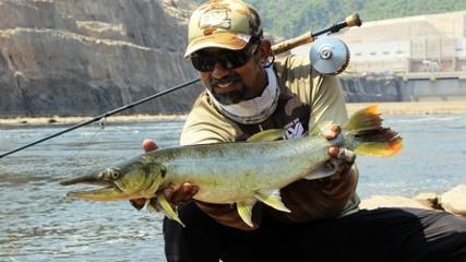 As Bicudas gigantes no Fly Fishing