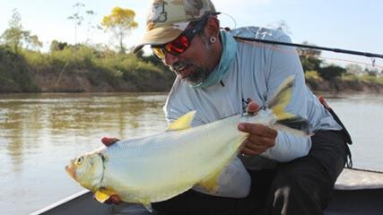 Apapá: o peixe dourado do rio Araguaia